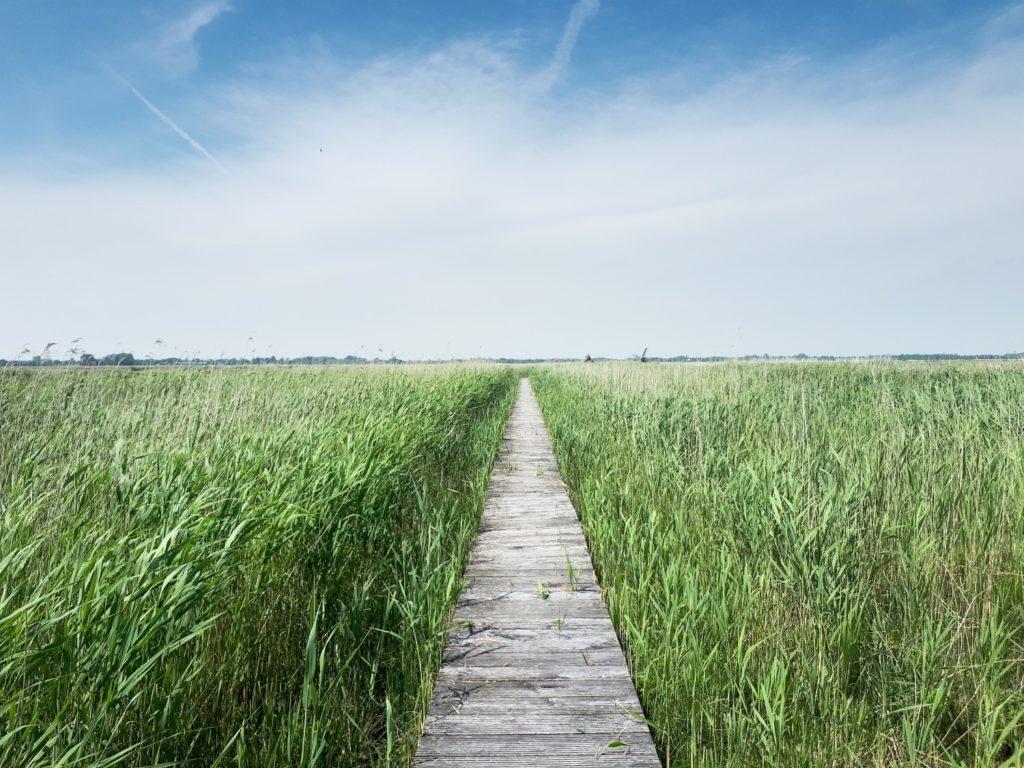 Waterland, Amsterdam Noord